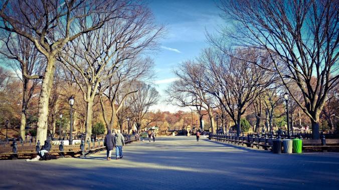 The Mall, Central Park, NYC: Photo: Marek Rygielski